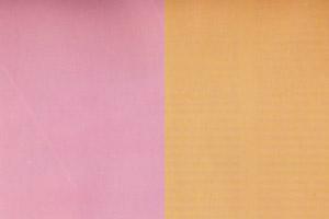 koloristika: hladna in topla roza