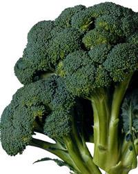 brokoli_s