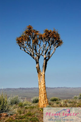 namibija4